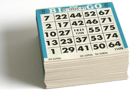 spielregeln bingo lotto